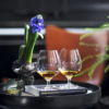 Holmegaard Cabernet cognacglas