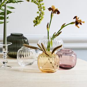 Primula vase lille