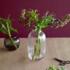 Holmegaard Primula vase